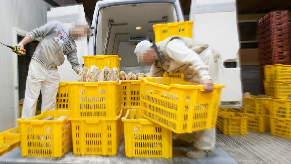 Sarroch (CA): Cercasi aiuto panettiere/a consegnatario nelle zone di Sarroch/Villa San Pietro/Pula/Nora - Full time - Orario di lavoro: 03.00 – 08.30